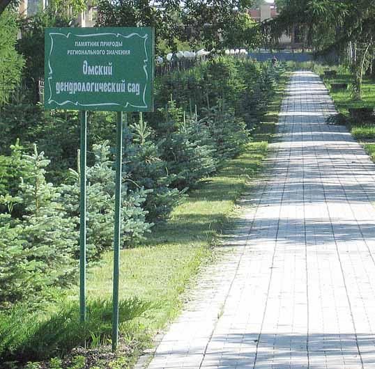 Экскурсия для молодоженов в Областной дендрологический сад имени Г.И. Гензе
